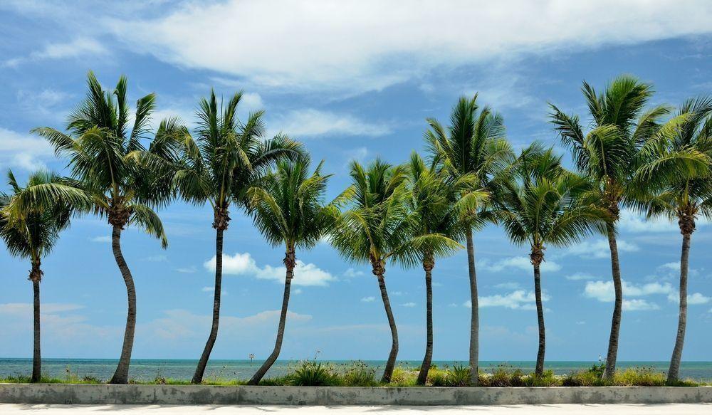 Ojus in Miami-Dade County, Florida
